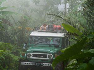 Expeditie Jungle Jeep