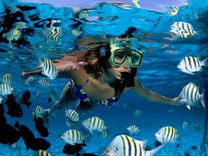 Snorkelparadijs en poederstrand