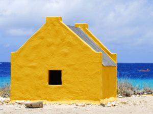 Flaneren & kajakken op kleurrijk Bonaire