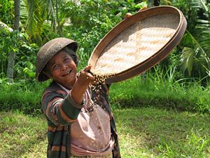 Het Javaanse leven