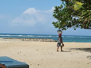 Geland op het Strand