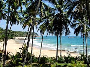 Cabana aan het paradijsstrand