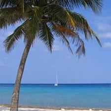Rondreis 4: Toeren van pleintjes naar palmenstrand